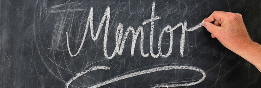 Flash Mentoring